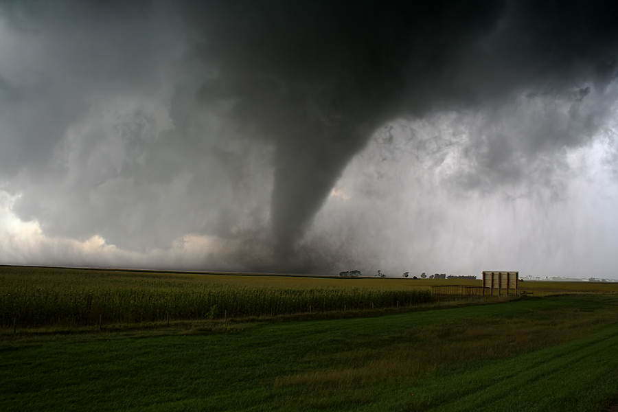 A tornado with a crop field in the foreground