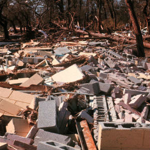 Debris Removal Services in Paris, Texas