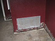 Mold and Mildew Growth