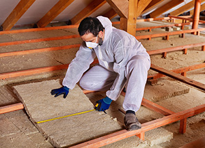 Insulation removal and installation paris tx insulation removal solutioingenieria Image collections
